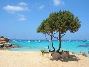 Bootscharter Formentera: Cala Saona