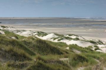 Charter Ijsselmeer: D?nen, Watt, Strand - wie hier auf der Nordsee-Insel Vlieland