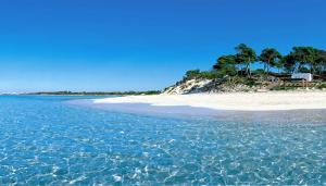 Charter Mallorca: Es Trenc im Süden Mallorcas - ein Strand wie in der Karibik